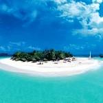 Maldive 8